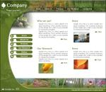 Шаблон дизайна сайта
