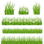PSD трава